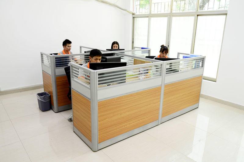 TDL Working Office Picture