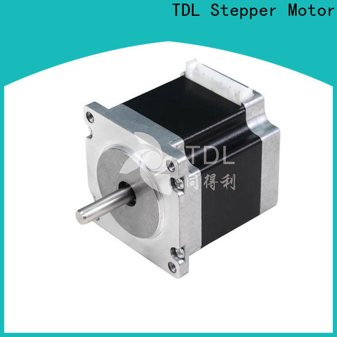 TDL quality precision stepper motor directly sale for security equipment