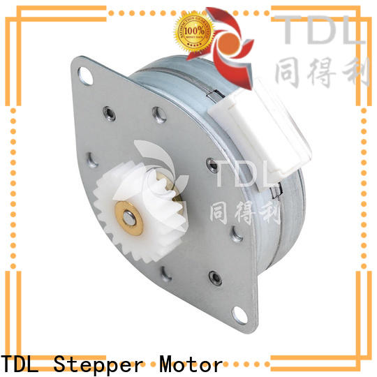 TDL small permanent stepper motor directly sale for medical equipment