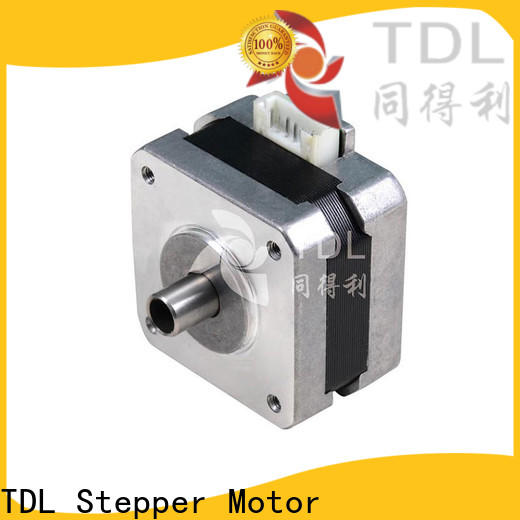TDL direct 2-phase stepping motor with good price for business