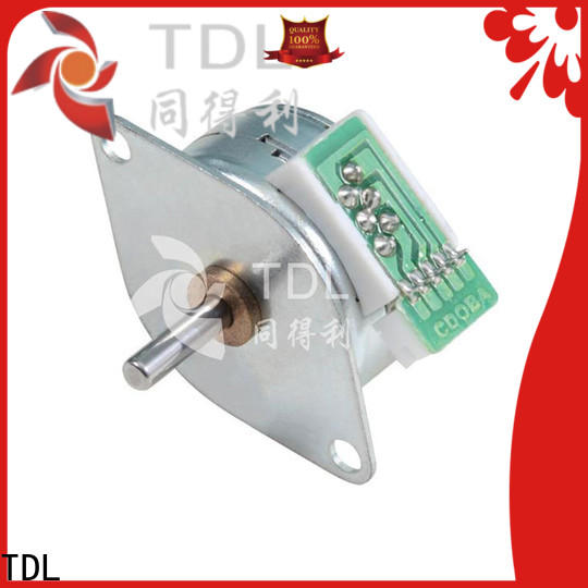 TDL small high power electric motor manufacturer for robots