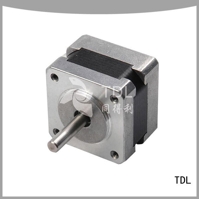 TDL quality industrial stepper motor directly sale for security equipment