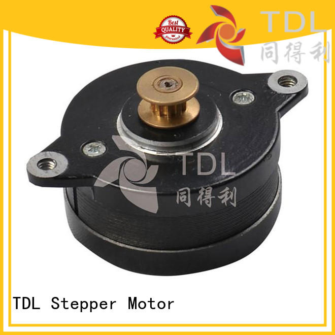 TDL cost-effective high speed stepper motor from China for security equipment