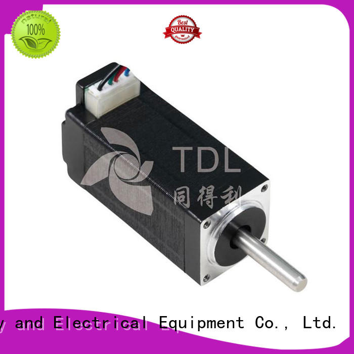 TDL motor steper manufacturer for security equipment