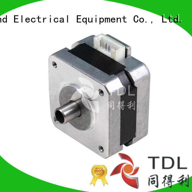 TDL brushless 2-phase stepping motor directly sale for robots