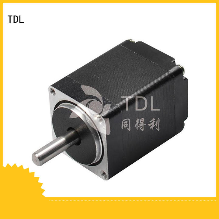 TDL precision stepper motor from China for robots